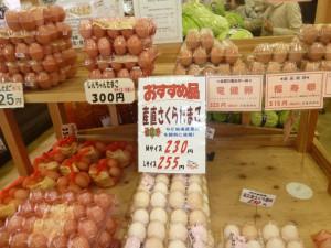 卵も売っています