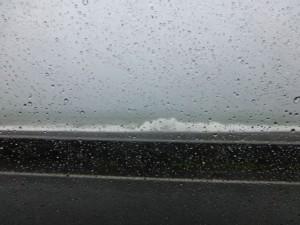台風来てます(^0^;)